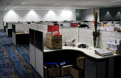 office electrical installations and lighting